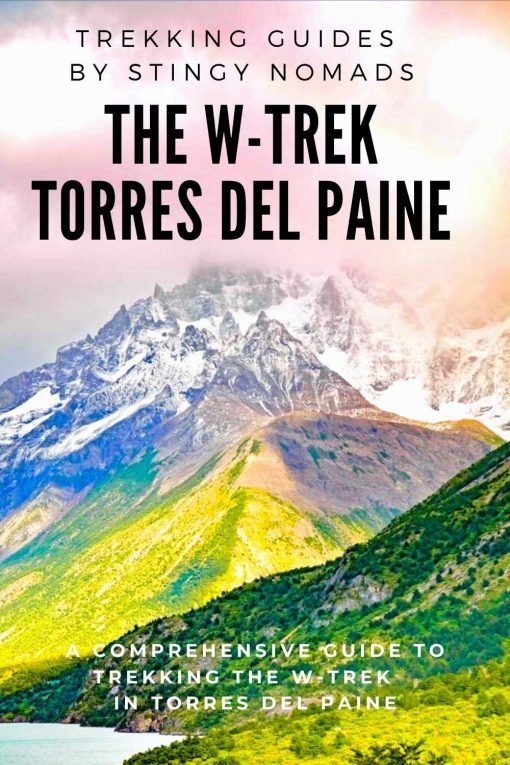 The W-trek Torres del Paine pin