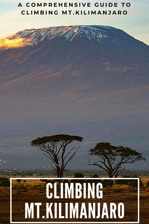 Climbing Mt.Kilimanjaro Tanzania