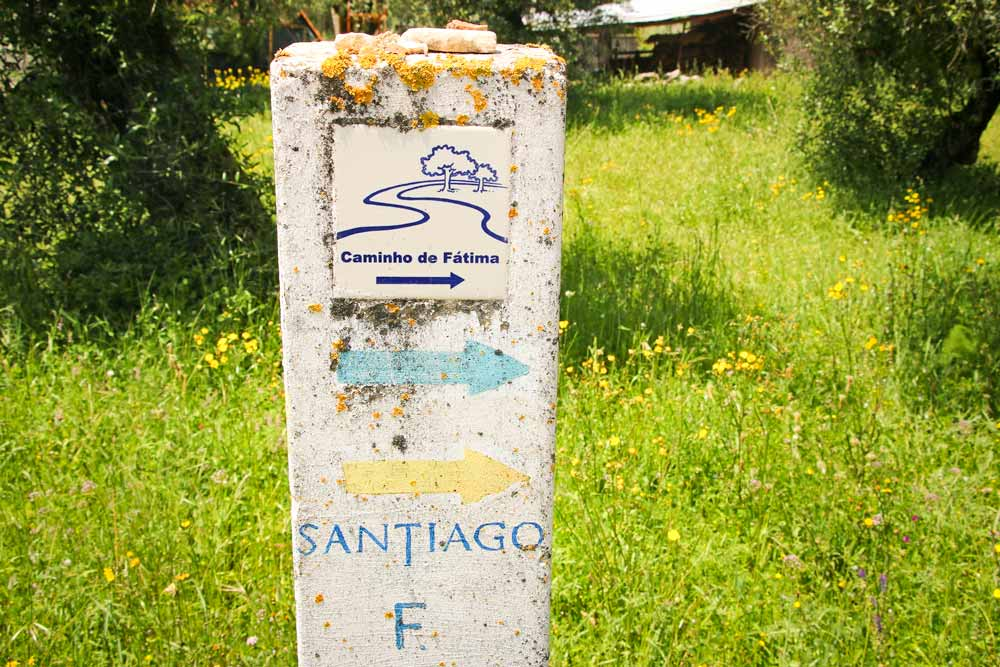 A pole with a blue and a yellow arrows marking the Camino Portuguese and the route to Fatima