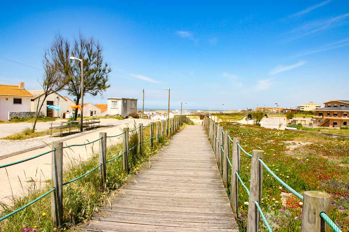 A wooden boardwalk towards the sea surrounded by the beach