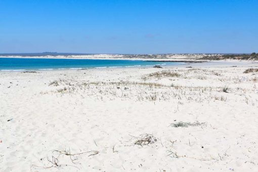 Endless powder-like sandy beach on the Flower Route in South Africa