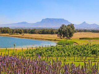 De Grendel Table Mountain view