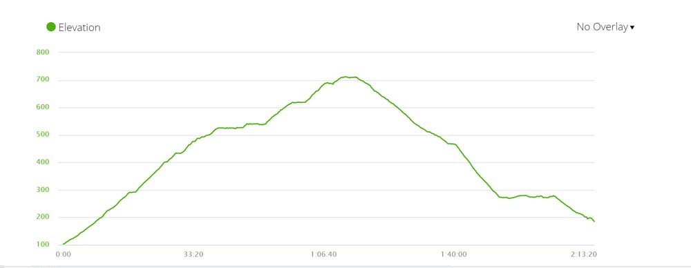 Elevation graph of the Skeleton Gorge hiking trail in Cape Town