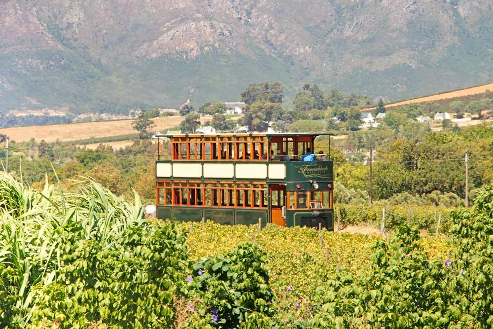 Franschhoek wine tram on South Africa honeymoon