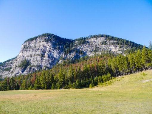 buffalo mountain banff