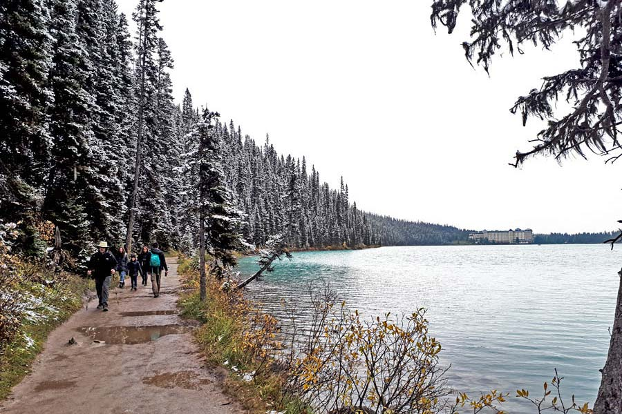 hiking lake louise lake shore