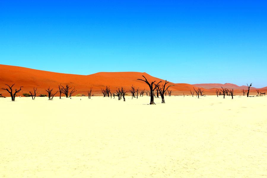 deadvlei, sossusvlei namibia